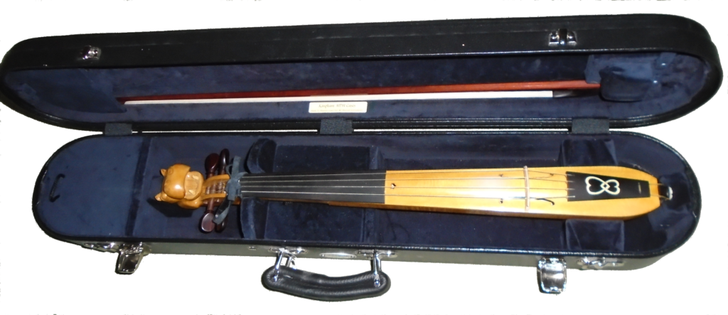 Image of hippochette and its bow in a case lined with dark velvet.
