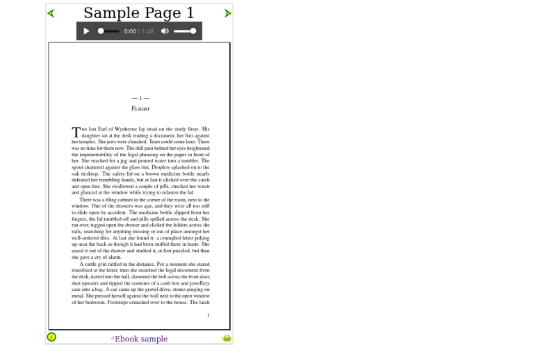 Image of sample page with navigational icons
